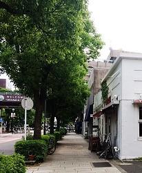 山下公園尾端,往大棧橋路上有幾家別具特色的雜貨小店。