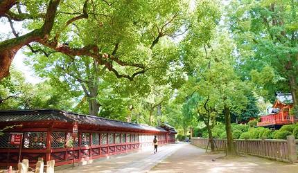 日暮里谷根千谷中銀座美食散步散策根津神社