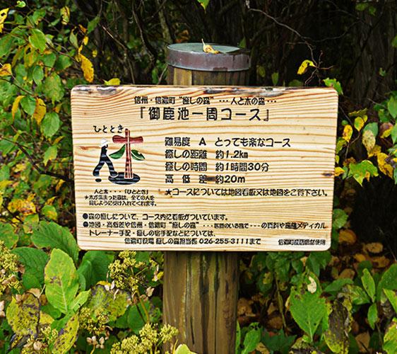 長野信濃町森林療癒法行程