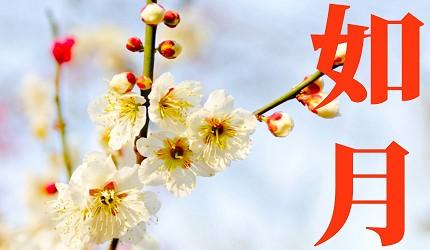 日本節氣12月份別稱由來日語如月