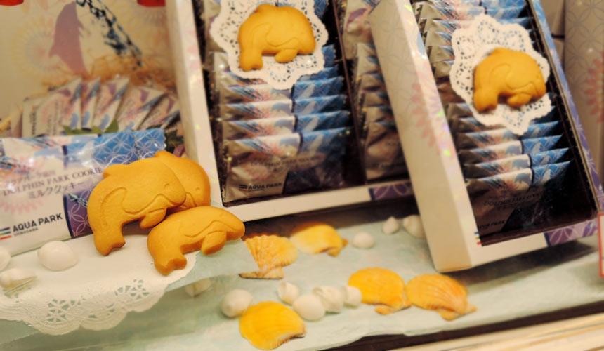 東京水族館樂園「Maxell Aqua Park 品川」人氣伴手禮海豚餅乾