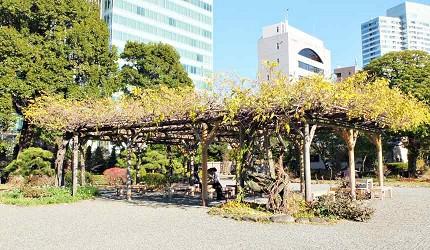 舊芝離宮恩賜庭園的紫藤棚架