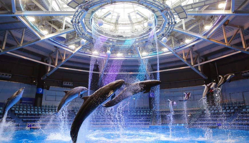 免費住宿品川王子大飯店!東京水族館樂園「Maxell Aqua Park 品川」按讚就享門票41%OFF