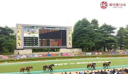 東京近郊景點推薦府中市東京賽馬場圍場