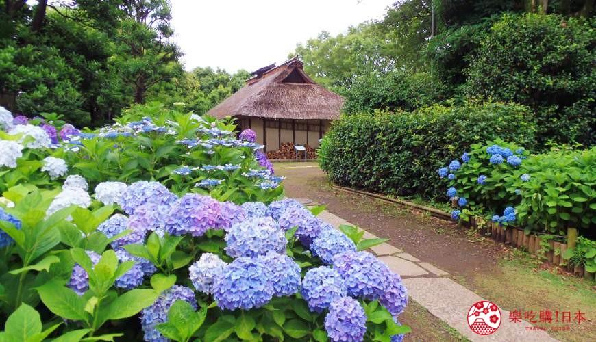 東京近郊景點推薦府中市鄉土之森博物館