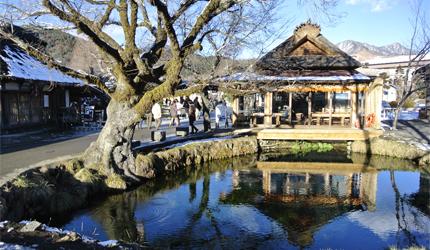 日本富士山附近的忍野八海中的湧池