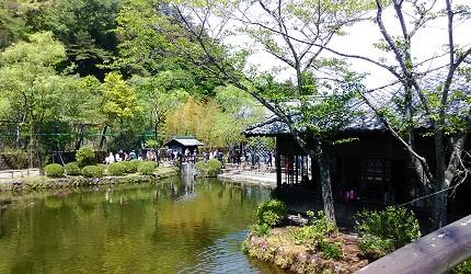 關東東京近郊枥木日光站前廣場鬼怒川江戶村主題樂園庭園