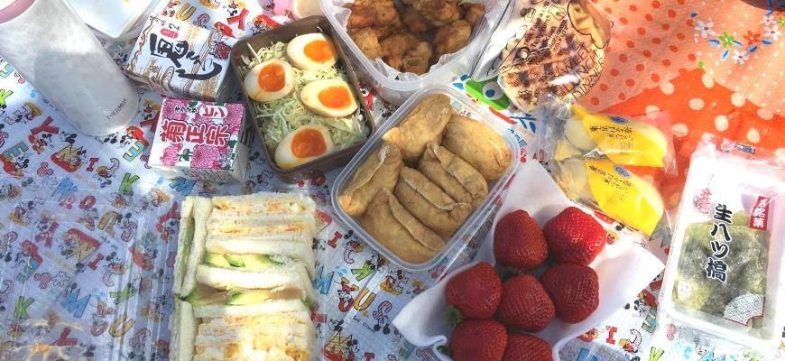日本全國東京自由行旅遊全攻略推薦景點近郊野餐公園