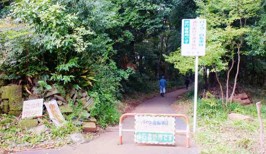 龍貓森林「どんぐりの道」的入口