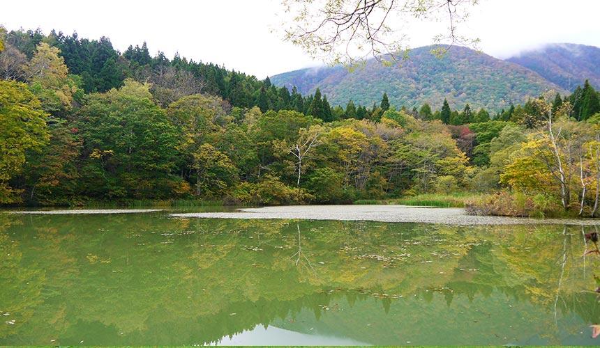 長野信濃町御鹿池很幽靜