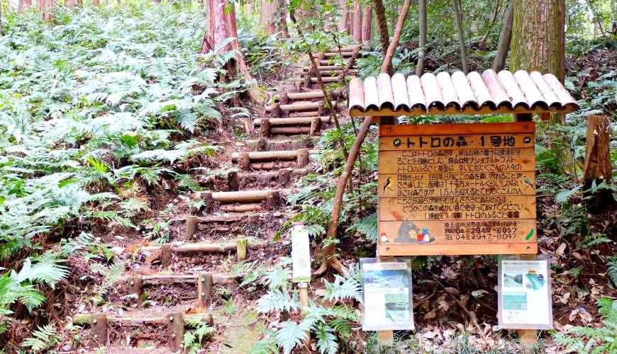 龍貓森林的入口龍貓森林一號地
