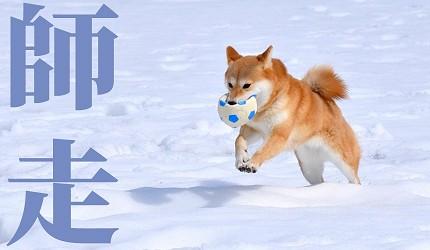 日本節氣12月份別稱由來日語師走