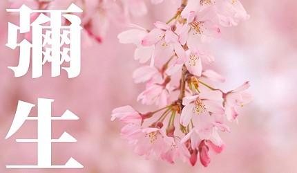 日本節氣12月份別稱由來日語彌生(弥生)