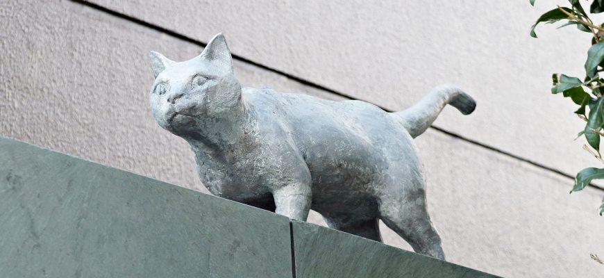 夏目漱石舊居跡貓