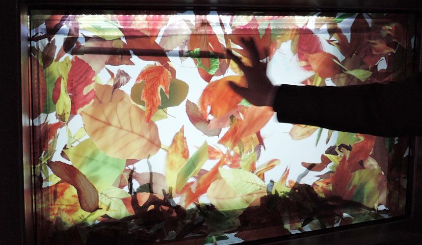 東京水族館樂園「Maxell Aqua Park 品川」觸控面板水族箱
