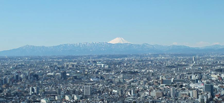 東京都廳富士山