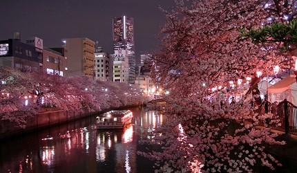 大岡川櫻花