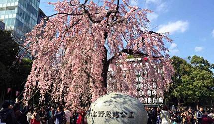 日本旅遊東京自助旅行自由行交通方式JR上野車站出口怎麼走不迷路攻略賞櫻花