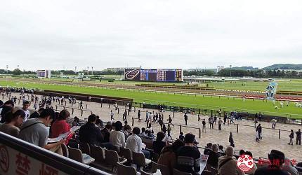 日本府中市东京赛马场赌马座位