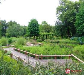 东京近郊景点推荐府中市乡土之森博物馆花园
