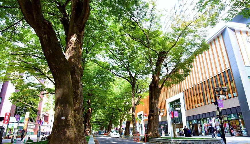 上級者的東京玩法:到古時武藏國首府「府中市」當一日市民