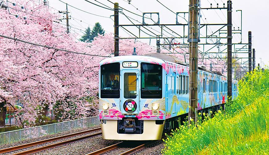 在電車裡享受優雅的用餐時光!搭乘西武鐵道「52席的至福」列車到秩父吃喝玩樂趣