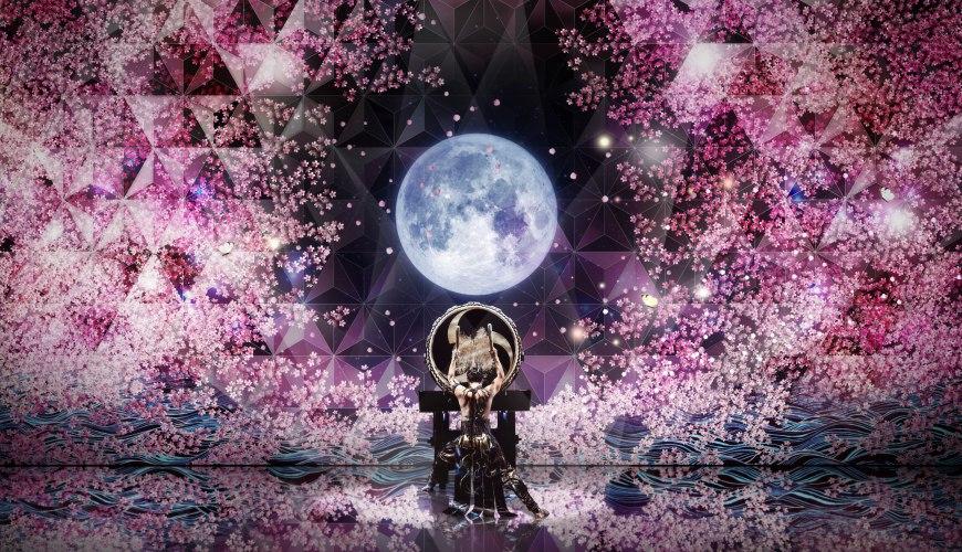 日本東京新宿和太鼓「萬華響」公演絢爛畫面