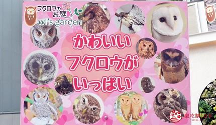 東京原宿貓頭鷹咖啡廳推薦「貓頭鷹庭園」店門口招牌