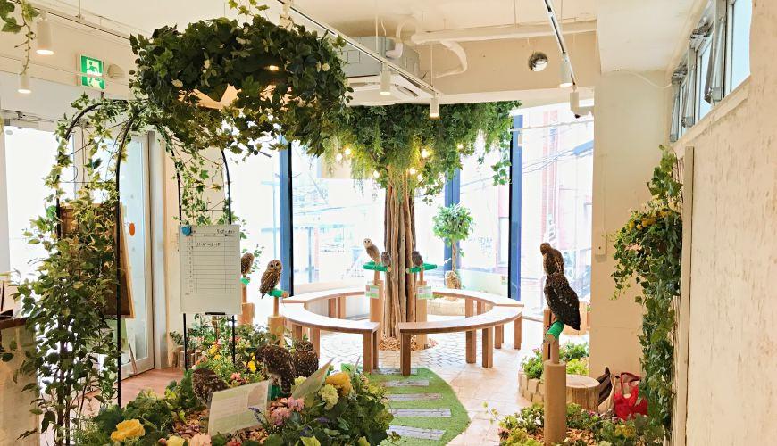 東京原宿貓頭鷹咖啡廳推薦「貓頭鷹庭園」的店內具有英國庭園風的景色
