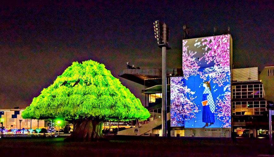 2018東京燈飾活動必去推薦「TOKYO MEGA ILLUMINATION」的「MEGA TREE GARDEN」