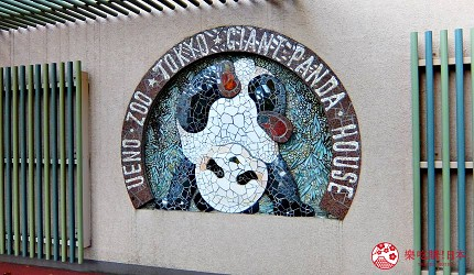 東京自由行上野景點上野動物園熊貓