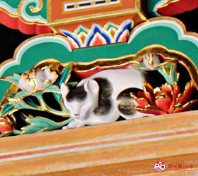 日光東照宮奧宮入口的眠貓