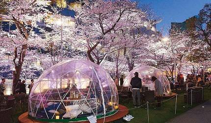【速报】2019东京市区赏樱推荐!六本木「MIDTOWN BLOSSOM」绝美日夜樱花盛会