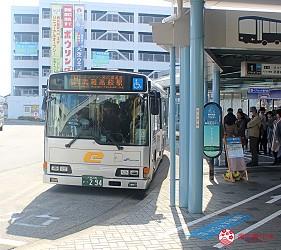 日本東京自由行埼玉飯能嚕嚕米樂園MOOMIN VALLEY PARK慕敏慕明嚕嚕米公園怎麼去門票交通行程攻略必買周邊商品