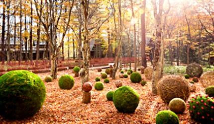 日本旅行東京近郊長野輕井澤秋天星野集團的「輕井澤 Bleston Court飯店」景點
