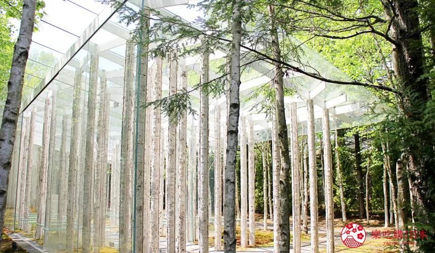 日本長野輕井澤一日遊必去人氣景點建築大師隈研吾操刀的「白樺森教堂」旁的心靈之門