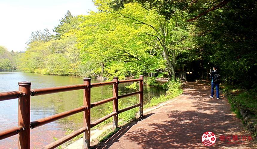 日本長野輕井澤一日遊必去人氣景點雲場池湖畔步道