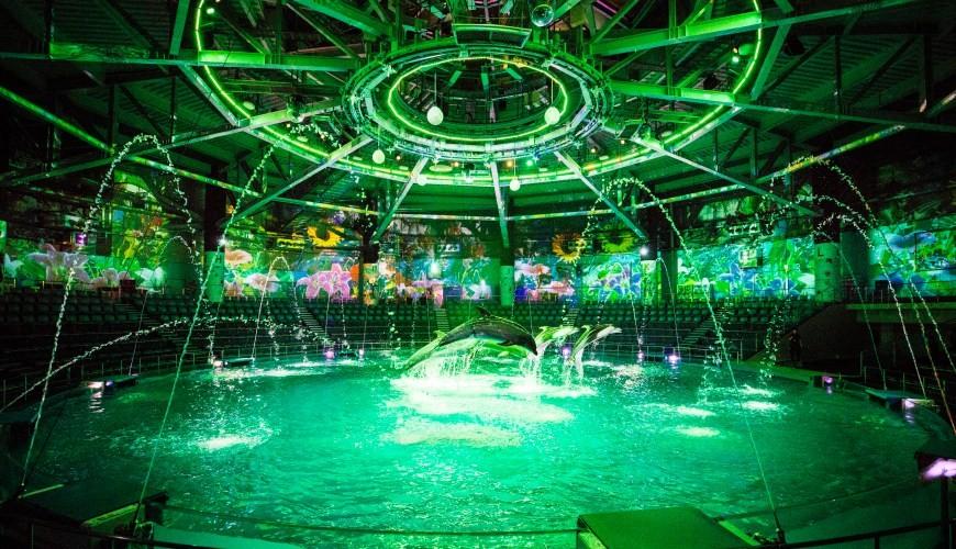 東京超夢幻水族館樂園「Maxell Aqua Park 品川」:看海豚秀、水母游的浪漫行程