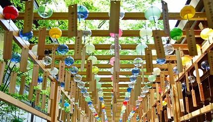 日本东京埼玉旅游自助旅行自由行关东祭典夏天的风物诗川越冰川神社缘结风铃祭