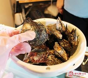 东京景点水族馆品川水族馆採珍珠体验