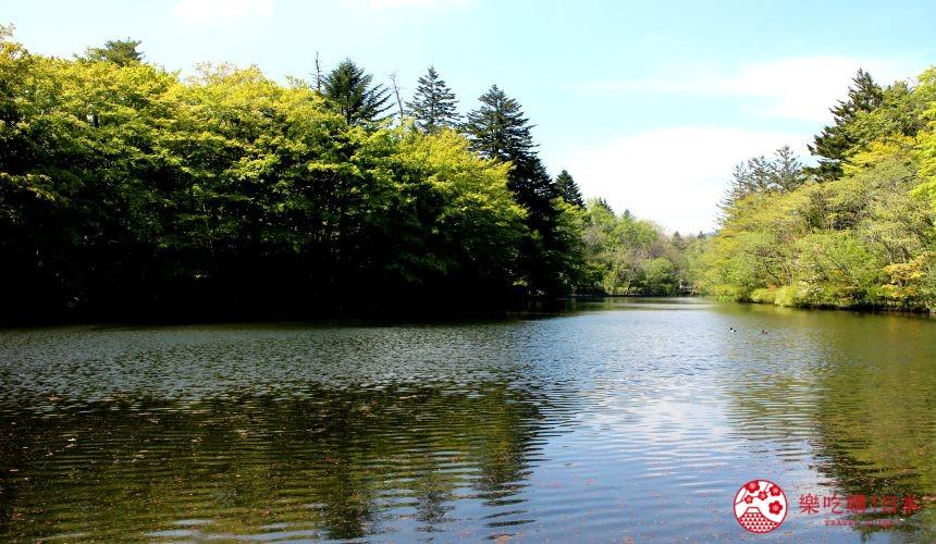 輕井澤自由行一日遊最完整攻略的雲場池示意圖