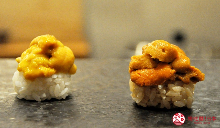 横滨高级寿司店必吃推荐「鮨 七海」的「お任せ握りコース」套餐的海胆寿司