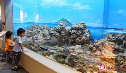 东京景点水族馆品川水族馆景观窗