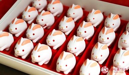 東京神樂坂美食景點推薦赤城神社福兔籤詩