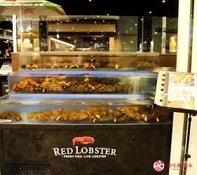 東京夜景景點推薦台場aquacity夜景餐廳redlobster
