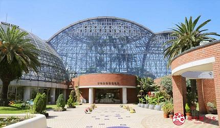 2019年2020年台场新木场观光购物景点梦之岛热带植物馆外观