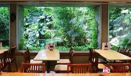 2019年2020年台场新木场观光购物景点梦之岛热带植物馆馆内咖啡馆