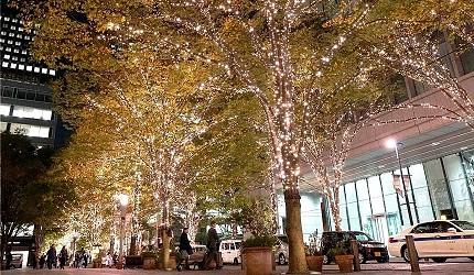 2019年去東京睇燈飾熱點丸之内浪漫香檳金樹步道的一直排燈飾
