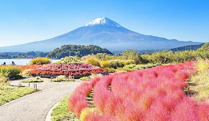 日本人私房推荐!不用人挤人也能眺望富士山的最佳景点河口湖大石公园
