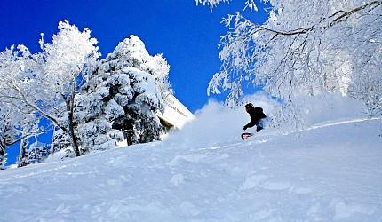 長野縣龍王滑雪公園滑雪道